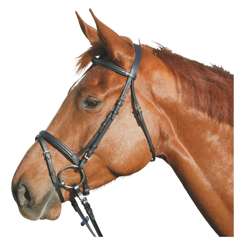 Как сделать всё для лошади